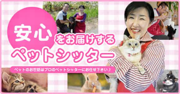 【1ヶ月5万円】ペットシッター