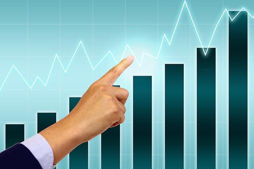業界別自己資本と借入金の比率